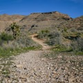 Loose rock will make up most of the trail surface for the hike.- Las Vegas Overlook Trail
