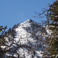 Mountain peak through the trees.- Crater Lakes via East Portal Trailhead