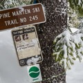 The beginning of the Pine Martin Trail, which paralells NF-83.- Sasquatch Ski Trail