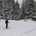 The turnoff from NF-83 to the Sasquatch Trail system.- Sasquatch Ski Trail