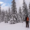 The flat, rolling terrain at the top of the upper loop can present some route finding challenges.- Sasquatch Ski Trail
