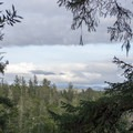 A slight view to the south from the trail.- Chief Tsiltcoos Trail