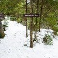 The intersection of the Ridge Trail and the Fire Tower Trail.- Elmore Mountain Fire Tower