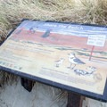 Interpretive sign for Siltcoos Beach. - Siltcoos Beach