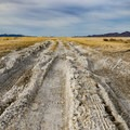 Muddy and rutted roads mean it may be a better choice to walk the final portion to the soak.- Smith Creek Valley Hot Springs
