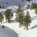 Slashing gullies with the bottom of Negro Canyon in the backround.- Donner Ridge Area