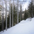 The wide path along the Lower Red Pine Lake Snowshoe.- Lower Red Pine Lake Snowshoe