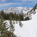 Lower Red Pine Lake Snowshoe.- Lower Red Pine Lake Snowshoe