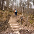 At times the trail ascends steeply up the staircases.- Mount Philo