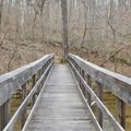 One of the several bridges in Montgomery Bell State Park.- Montgomery Bell Trail