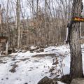 Mount Tremper trail sign-in.- Mount Tremper