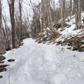 Red trail to the summit.- Mount Tremper