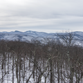 View from the fire tower.- Mount Tremper