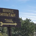 The trail to Bridge Mountain is actually marked with a legitimate sign and is somewhat maintained. You're in luck!- Bridge Mountain