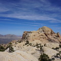 Looking at Bridge Mountain from near the end of the trail in the pinyon pine and juniper forest. - Bridge Mountain