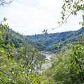 View up the canyon from the trail.- Canyon Creek Trail To The Black Hole of Calcutta Falls