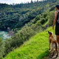 This trail is great for dogs.- Canyon Creek Trail To The Black Hole of Calcutta Falls