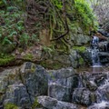 Streams such as this one often form late winter and spring and can sometimes cover a trail.- Canyon Creek Trail To The Black Hole of Calcutta Falls