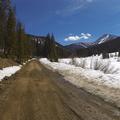 A muddy road.- French Gulch