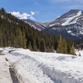 Mud gives way to slush on the road.- French Gulch