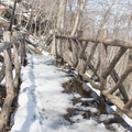 A bridge on the Appalachian Trail.- Bear Mountain + Perkins Tower