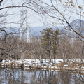 Hessian Lake and the Bear Mountain Bridge.- Bear Mountain + Perkins Tower