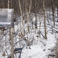 Trailhead off of Lake Road.- Stissing Fire Tower