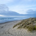 Siltcoos Beach in the Oregon Dunes National Recreation Area.- Siltcoos Beach