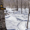Yellow markers line the trail.- Red Hill Fire Tower