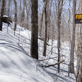 Almost to the fire tower.- Red Hill Fire Tower