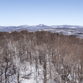 View from the top of the fire tower.- Red Hill Fire Tower