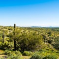 Open views from Roadrunner Campground.- Roadrunner Campground