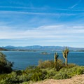 Lake Pleasant.- Roadrunner Campground