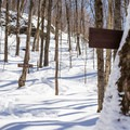 The junction with the Pinnacle Meadow Trail.- Stowe Pinnacle