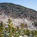 Looking back to Hogsback Mountain.- Stowe Pinnacle