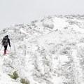 Rocky summit of Avery Peak.- The Bigelows + Horns Loop