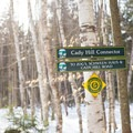 Intersections are clearly marked with bright signage.- Cady Hill Forest