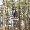 The Bear Trail has an especially noticeable trail sign.- Cady Hill Forest