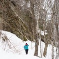 Cliffs line the beginning of the hike.- Deer Leap Rock