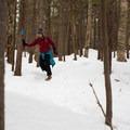 Blue blazes mark the trail.- Deer Leap Rock
