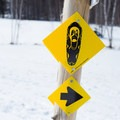Signage for snowshoeing is clearly marked.- Trapp Family Lodge Cross-country Ski Center