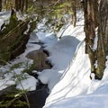 The Catamount Trail parallels a narrow streambed.- Michigan Valley
