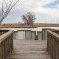 A viewing dock on Lake Mary.- Rocky Mountain Arsenal National Wildlife Refuge