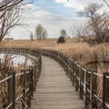 Floating boardwalk on the Lake Mary Loop Trail.- Rocky Mountain Arsenal National Wildlife Refuge