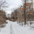 Continuing on snow-covered trails.- Franny Reese State Park