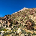 Two large, rust colored boulders mark the beginning of your ascent up the ridge.- Indianhead Peak: Southeast Ridge