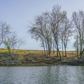 Views from the Sacramento Barge Canal.- Sacramento Barge Canal