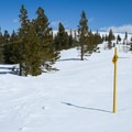 Trail markers along the winter trail toward Panorama Dome.- Panorama Dome