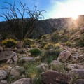 Sunset view on along the ridgeline of an alternate trail in Anza-Borrego Desert State Park.- Borrego Palm Canyon