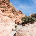 Hiking the Kraft Mountain Loop.- Kraft Mountain Loop Hike